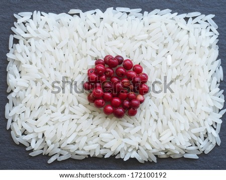 Unusual Japan flag made of food and condiments - stock photo