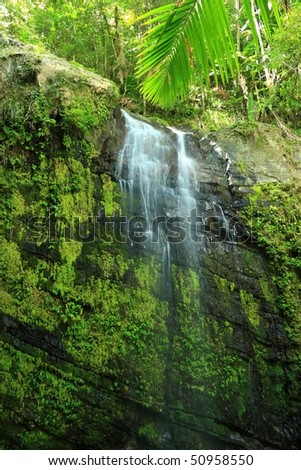 Upper Falls on Cascada Juan Diego in the El Yunque rainforest in the Caribbean National Forest, Puerto Rico - stock photo