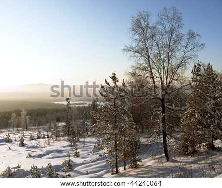 Ural Mountains. Winter landscape. Snow-covered trees.
