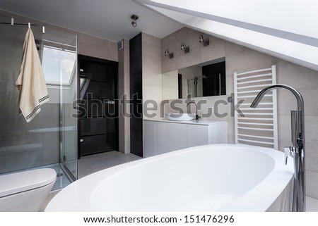 Urban apartment - bath, shower and wc in bathroom - stock photo