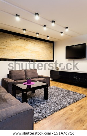 Urban apartment - grey comfortable sofa in living room - stock photo