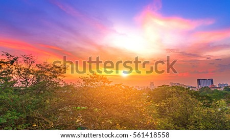 stock photo urban lake with tree and sunrise at bangkok city thailand 561418558 - Каталог — Фотообои «Закаты, рассветы»