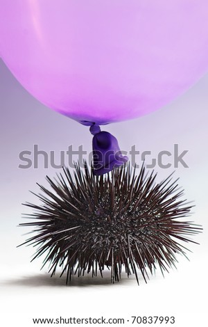 Urchin get in touch with a balloon - stock photo