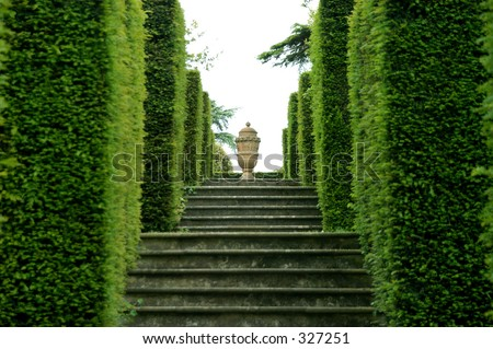 Urn at the top of a row of steps & hedges with focus on the Urn