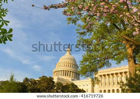 US Capitol Building in Washington DC - USA - stock photo