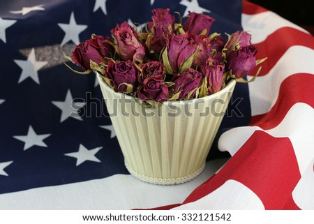 US flag rose flower - stock photo