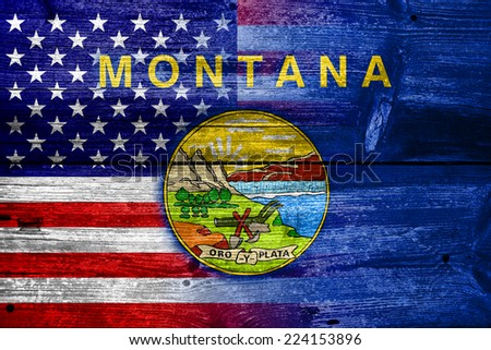 USA and Montana State Flag painted on old wood plank texture - stock photo