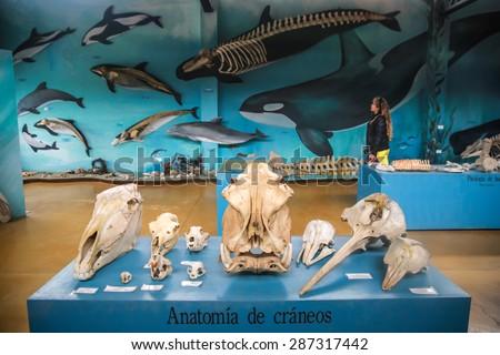 USHUAIA ARGENTINA DECEMBER 27 2014 Museum Stock Photo (Royalty Free ...