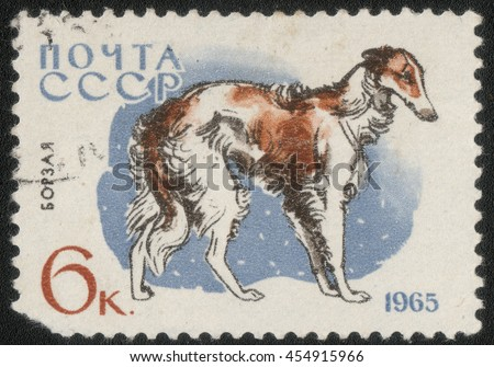 "USSR - CIRCA 1965: A post stamp printed in USSR shows a series of images ""Animal world"", circa 1965 - stock photo"