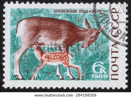 """USSR - CIRCA 1969: A postage stamp printed in the USSR shows a series of images """"Animals""""circa 1969 - stock photo"""