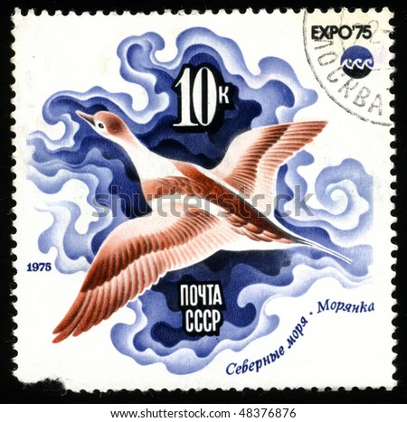 "USSR - CIRCA 1975: A postage stamp printed in the USSR shows image of the he international fair ""EXPO`75"", Sea duck, circa 1975"
