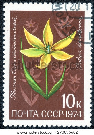 "USSR - CIRCA 1974: A Postage Stamp series of images ""Garden Flowers"", circa 1974 - stock photo"