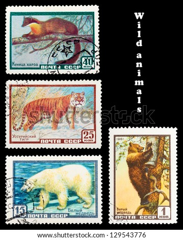USSR - CIRCA 1961: A set of postage stamps printed in USSR shows wild Animals, series, circa 1961