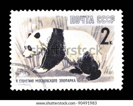 "USSR - CIRCA 1964: A stamp printed in the USSR (Russia) shows a panda with the inscription and  the series name ""On the centenary of the Moscow Zoo"", circa 1964"