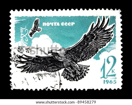"""USSR - CIRCA 1965: A stamp printed in the USSR (Russia) shows Birds of  Prey with the inscription """"Golden Eagle (Aquila chrysaetos)"""" from the series """"Birds of Prey"""", circa 1965 - stock photo"""