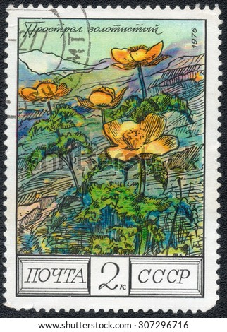 "USSR - CIRCA 1976: A stamp printed in the USSR shows a series of images ""Wildflowers"", circa 1976"