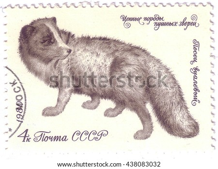 USSR - CIRCA 1980: A stamp printed in the USSR shows Fur Arctic fox, circa 1980 - stock photo