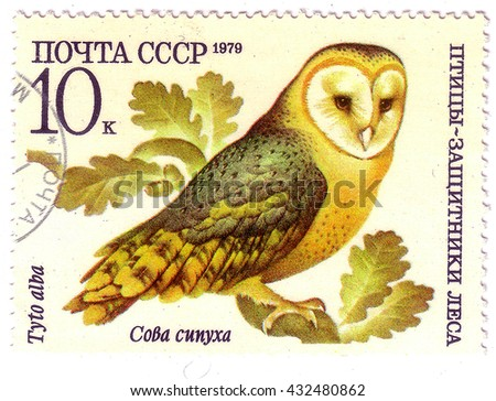 "USSR - CIRCA 1979: A stamp printed in USSR shows a Tyto alba, series ""Birds - the defenders of the forest"", circa 1979  - stock photo"