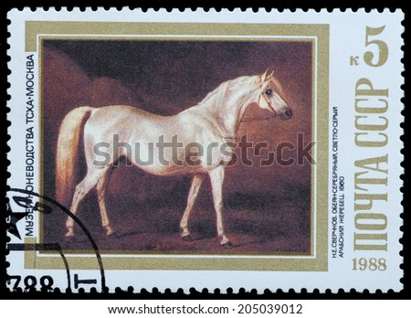 USSR - CIRCA 1988: A stamp printed in USSR, shows Arabian Stallion 1860, by N.E. Sverchkov, series Moscow Museum of Horse Breeding, circa 1988 - stock photo