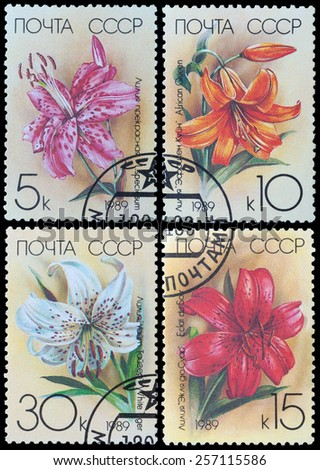 USSR - CIRCA 1989: a stamp printed in USSR shows flower Lily, circa 1989 - stock photo