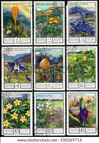 "USSR - CIRCA 1976: A stamp printed in USSR, shows series of ""Flowers of the mountains of Caucasus"", circa 1976."