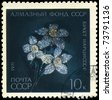 "USSR - CIRCA 1971: A Stamp printed in USSR shows the Diamond Daffodils, 18th cent. from the series ""Precious Jewelry"", circa 1971 - stock photo"
