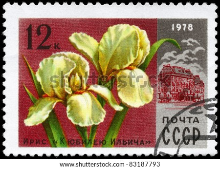 "USSR - CIRCA 1978: A stamp printed in USSR shows the Iris ""Ilich anniversary"" and Lenin Central Museum, from the series ""Moscow Flowers"", circa 1978"