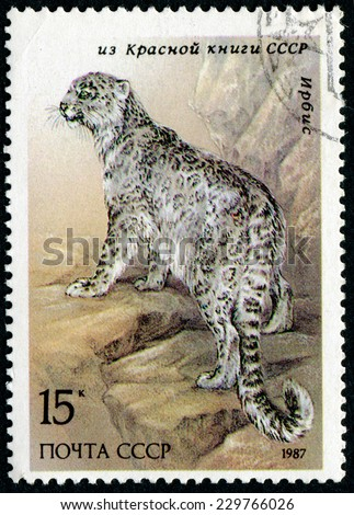 USSR - CIRCA 1987: The postal stamp printed in USSR shows leopard, series Red Book of the USSR, circa 1987 - stock photo