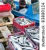 UST-BARGUZIN, RUSSIA - JUNE 21: A local fishing artel unloads its catch after a morning fishing, June 21, 2010 in Ust-Barguzin, Buryatia, Russia. - stock photo