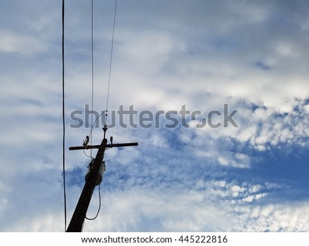 Utility Pole Supporting Wires for Electrical Power Distribution.