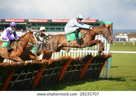 UTTOXETER, UK - MARCH 28: Jockey WMcCarthy on Albert Park (No 1) from T Molloy on Anyauldiron (no 2) from P Brennan onBradford Boris (No3) in Maiden hurdle race class4 at Uttoxeter, UK, March 28 2009 - stock photo