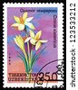 UZBEKISTAN - CIRCA 1993: a stamp printed in Uzbekistan shows Crocus, Crocus Alatavicus, Flower, circa 1993 - stock photo