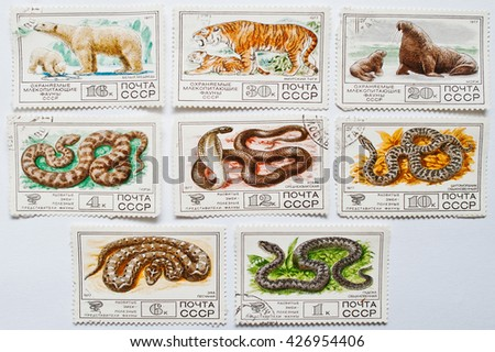 UZHGOROD, UKRAINE - CIRCA MAY, 2016: Collection of postage stamps printed in USSR shows protected mammals fauna animals and reptiles snakes, circa 1977 - stock photo