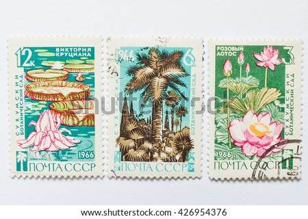 UZHGOROD, UKRAINE - CIRCA MAY, 2016: Collection of postage stamps printed in USSR, shows Sukhumi Botanical Garden, circa 1966 - stock photo