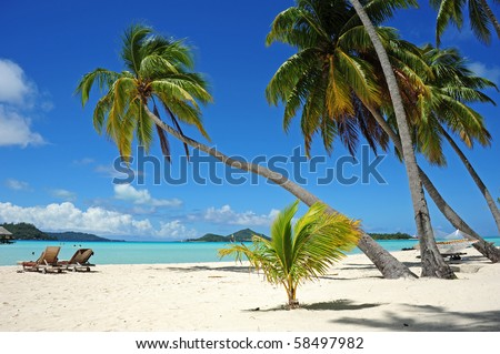 vacation at south pacific - stock photo