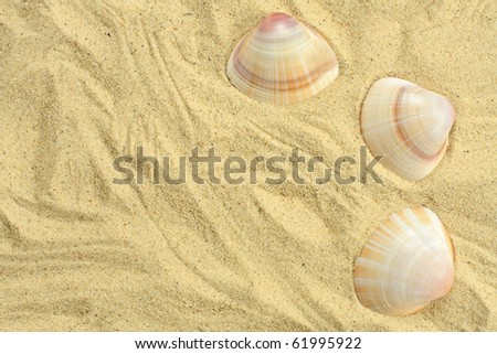 Vacations background - stock photo