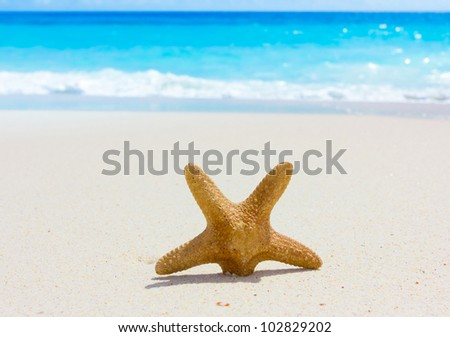 Vacations Surf Sand - stock photo