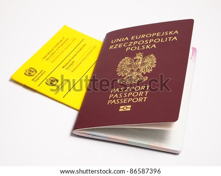 vaccination book with passport - stock photo