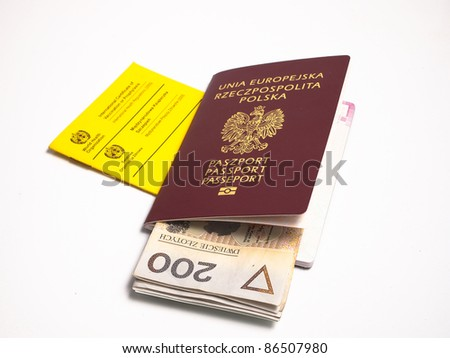 vaccination book with passport and money - stock photo