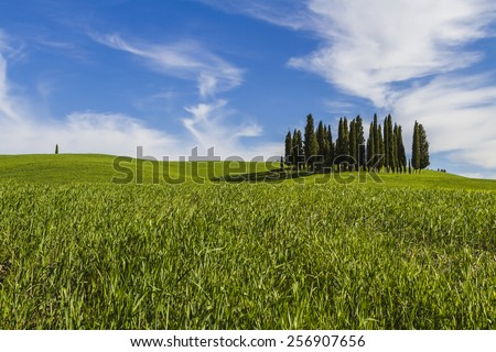 Val d'Orcia in Tuscany, Italy - stock photo