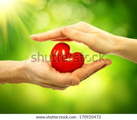 Valentine Heart in Man and Woman Hands over Nature Green Sunny Background. Love and Relationships Concept. Valentines Day Postcard Art Design. Couple Taking Red Heart