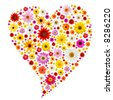 Valentine heart made from colorful spring daisies isolated on white. - stock photo
