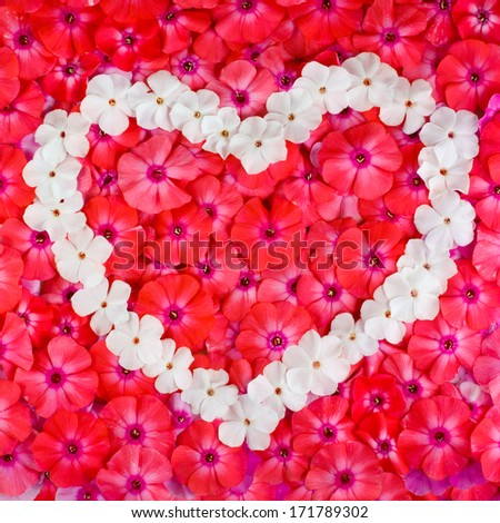 Valentine heart made with flowers