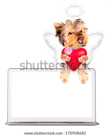 valentine puppy dog holding heart with ?omputer - stock photo