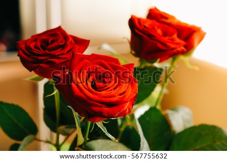 valentine day flowers stock images, royalty-free images & vectors, Ideas