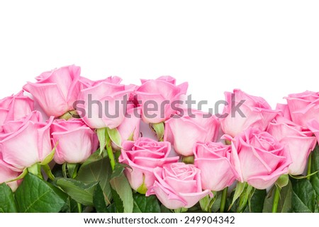 Valentines day background with pink roses. Isolated on white. Top view with copy space - stock photo