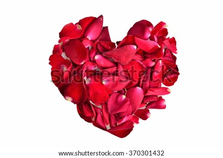 Valentines Day, Red Roses  on White Background. - stock photo