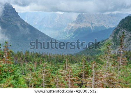 Valley and mountains in summer in Glacier National Park. - stock photo