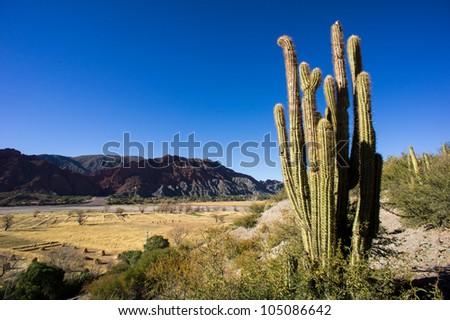 Valley near Tupiza, Bolivia - stock photo