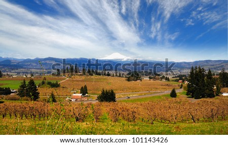 Valley view in hood river - stock photo